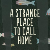 Thumbnail image for A  STRANGE  PLACE  TO  CALL  HOME