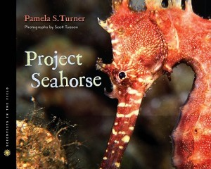 Post image for Project Seahorse by Pamela Turner