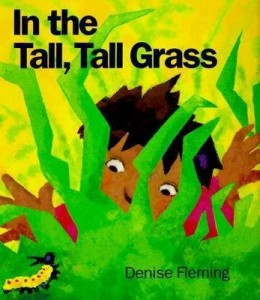 in-the-tall-tall-grass