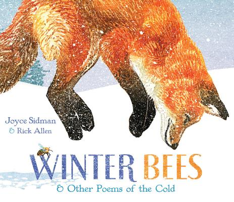 Post image for Winter Bees and Northern Lights