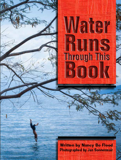 Post image for WATER RUNS THROUGH THIS BOOK by Nancy Bo FLood