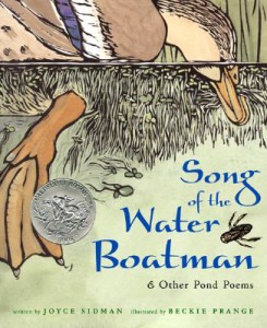 Song of the Water Boatman by Joyce Sidman, illustrated by Beckie Prange